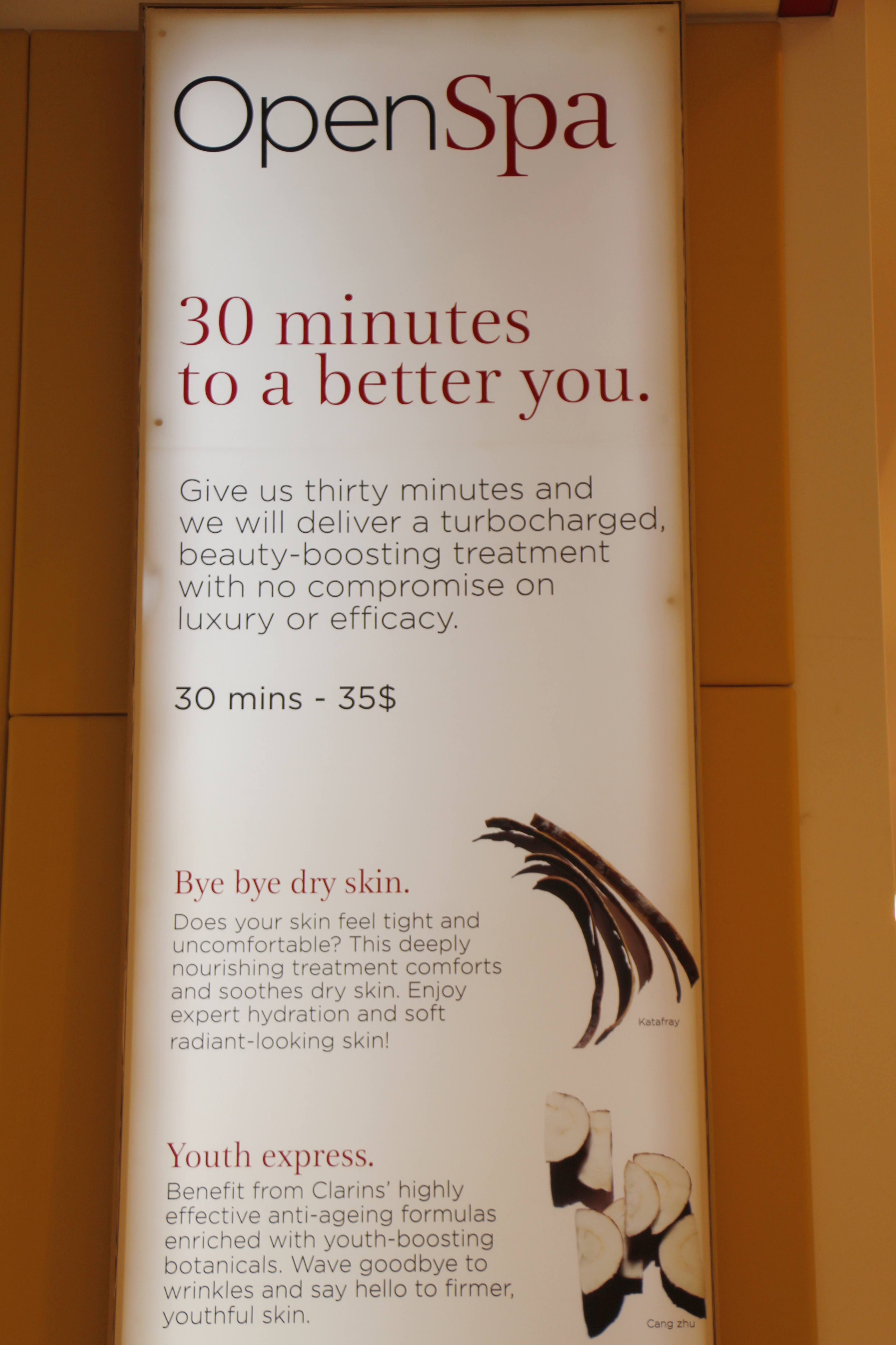Open Spa by Clarins Get Your Glow On in 30 Minutes! | KIKI